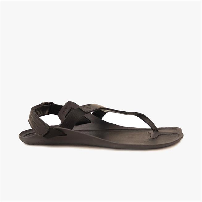 TOTAL ECLIPSE II LUX MENS